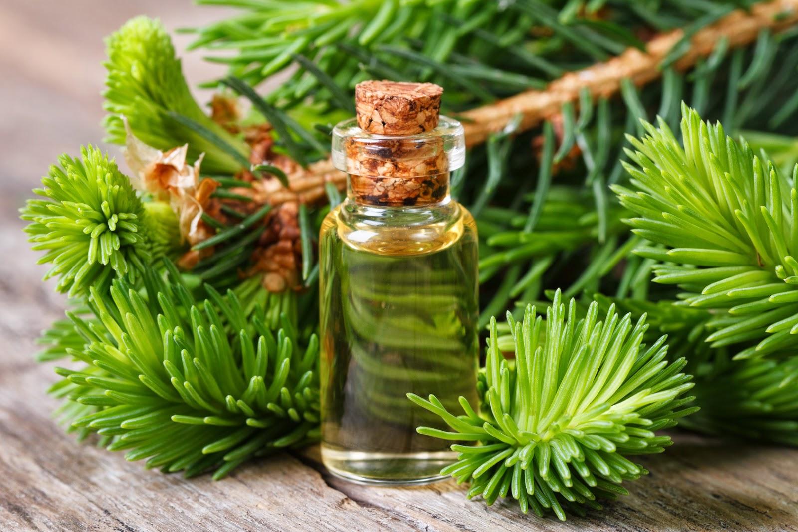 Польза масел из лечебных растений