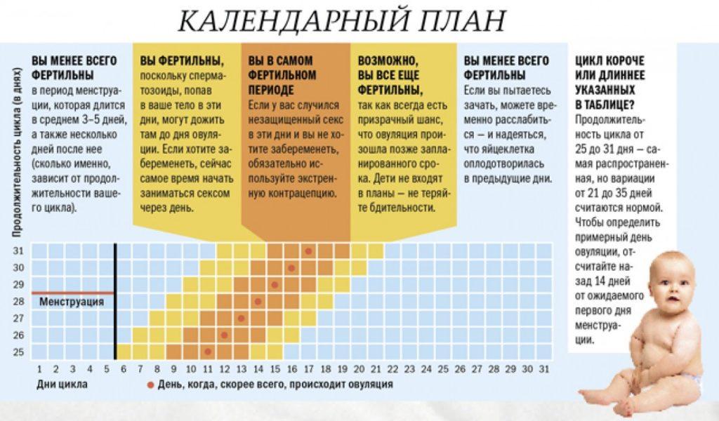 таблица менструального цикла