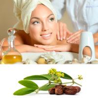 Масло жожоба для кожи: свойства, состав и применение