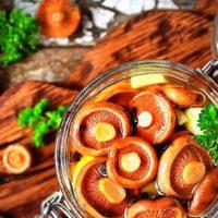 Блюда из рыжиков — 7 лучших рецептов