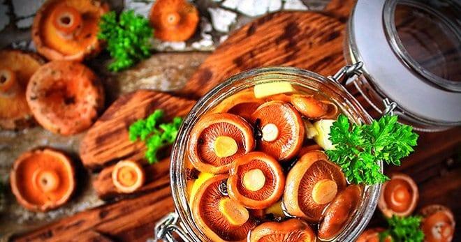 как готовить рыжики грибы